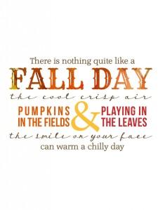 fallday-804x1024